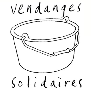 Solidarity grape-harvests: support winemakers!